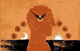 orologio_biologico