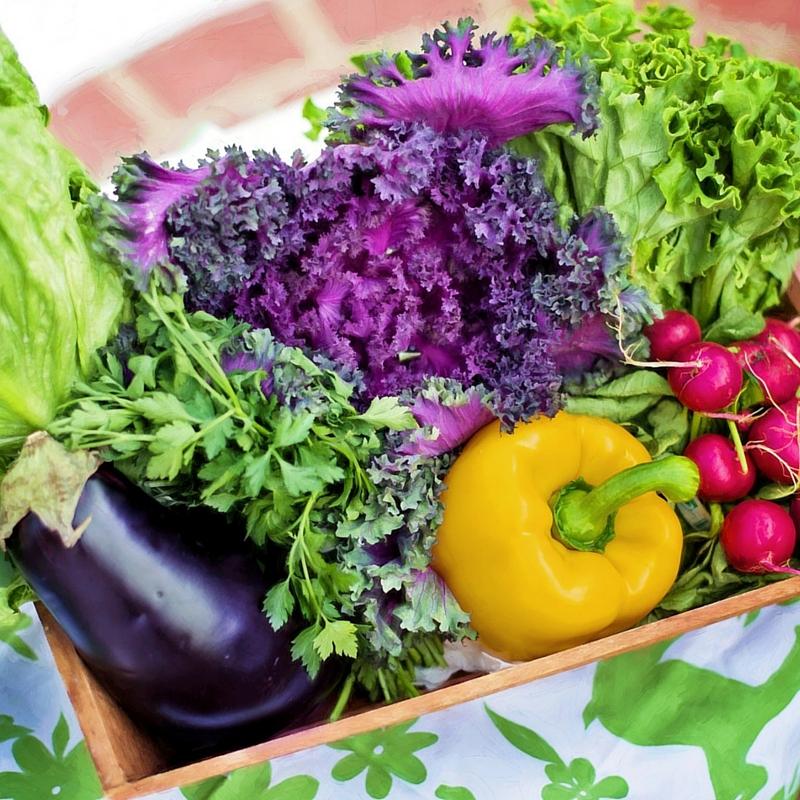 Alimentazione e sport: 7 cose da sapere!